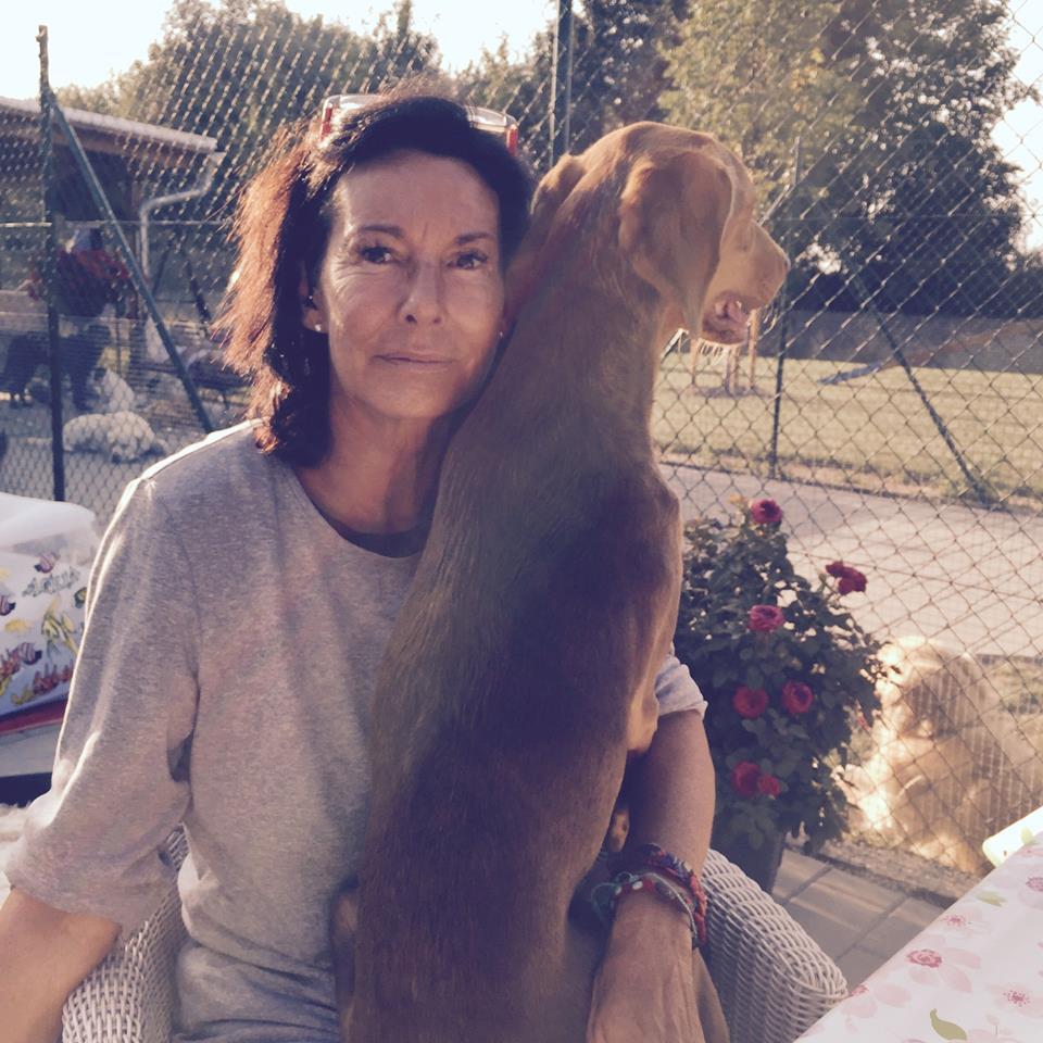 Hundepension am Birkensee - Karin Angermair-Mauerer